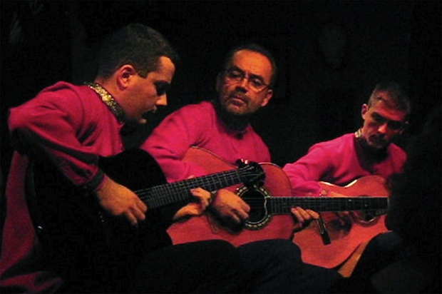Balkan Strings Trio