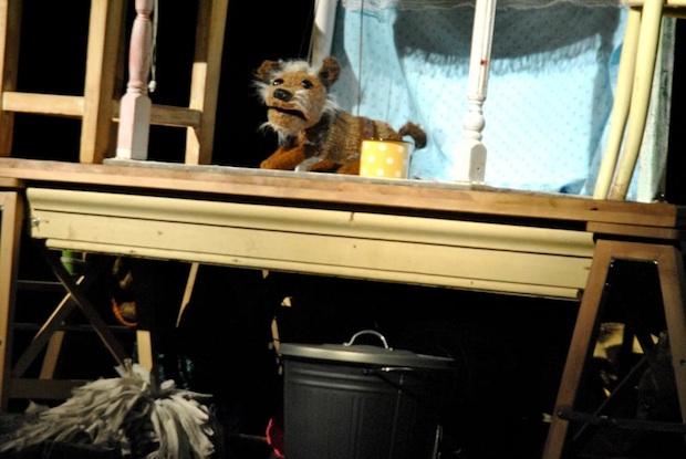 Divadlo Piki: Pes prí(tulák)